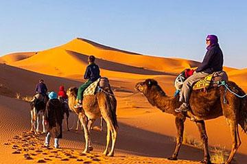 Best Marrakech Day Trips