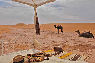 Why you need Marrakech desert tours?