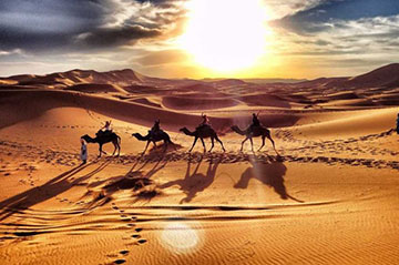 Best marrakech camel ride benefits